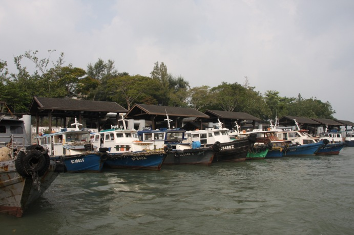 Boats that take you to Pulau Ubin