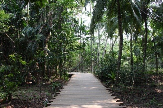 Pulau Ubin walking trail
